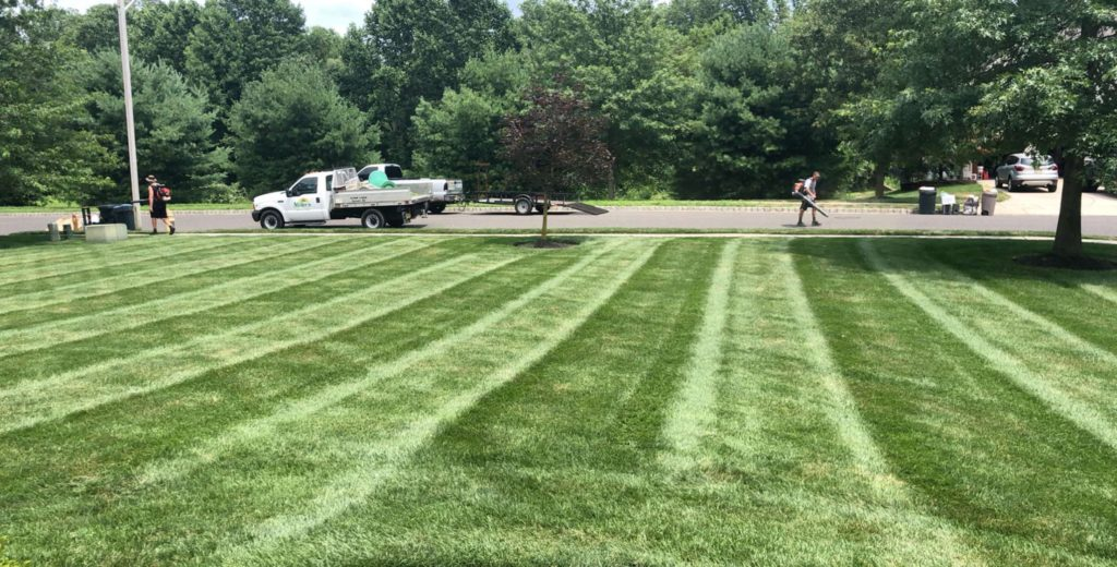 lawn care Williamstown NJ